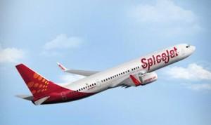 SpiceJet-300x178